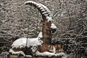 Stückhof im Schnee